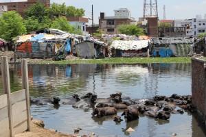 Uno de los slums donde Semilla para el Cambio trabaja sobre el terreno.