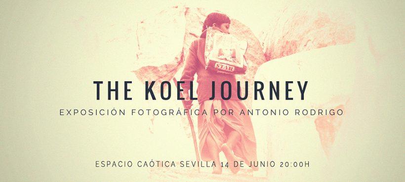 Se inaugura en Sevilla la exposición «El viaje de Koel»